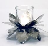 Blüte mit Glas