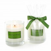 Home Candle Hills - Green Fig & Walnut